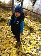 Photo 2013-10-04 12 22 09